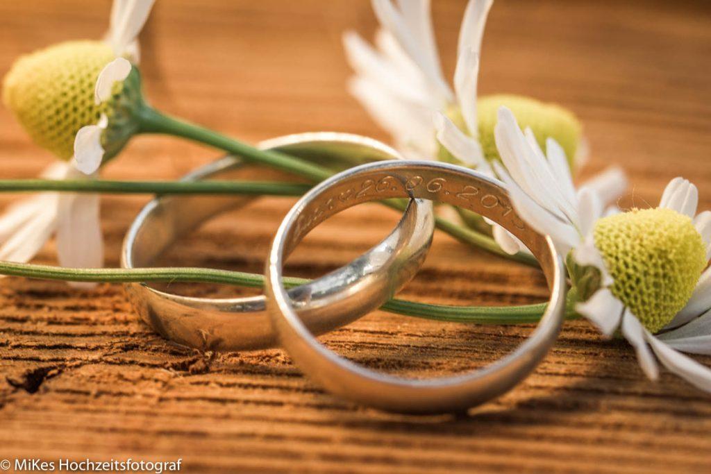 Gänseblümchen Ringe